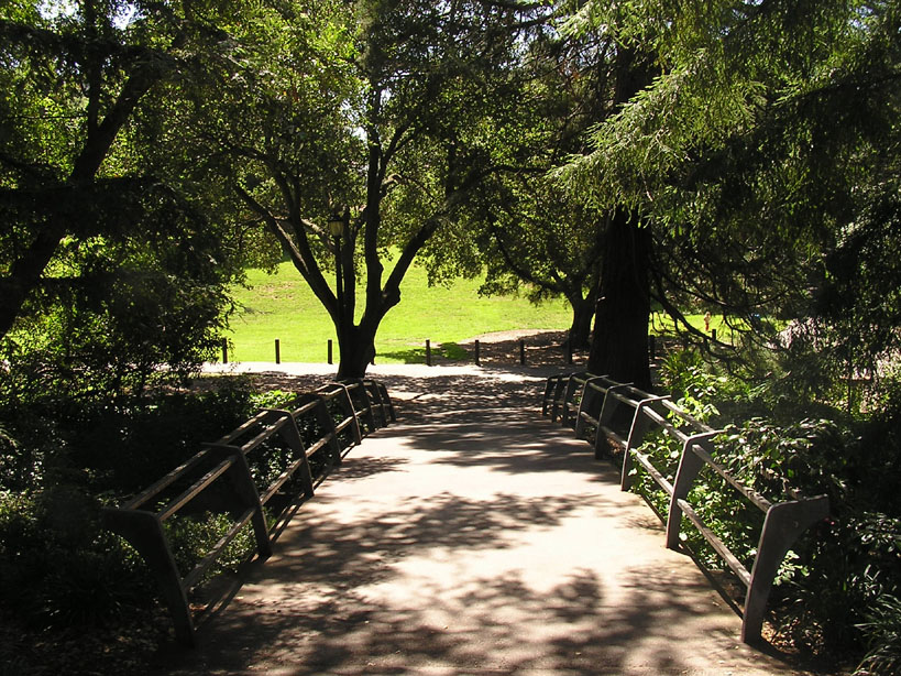 Bridge to Faculty Glade