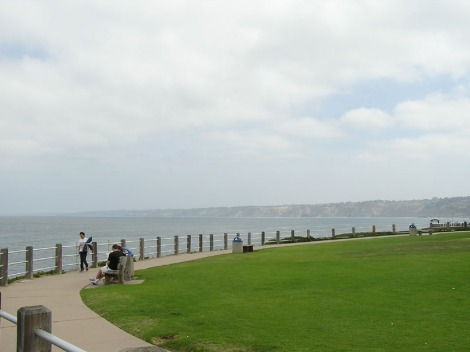 P5160043.Grass and sea