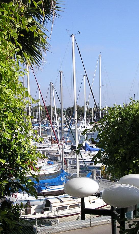 P6260065.Sailboats