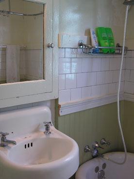 Genesee-bathsink