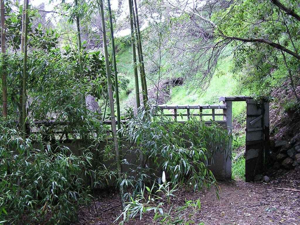 Bamboo gate