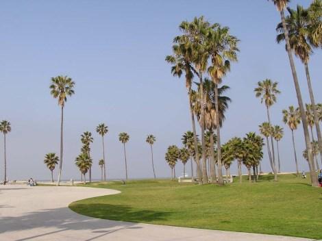 33.Palms
