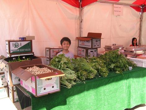 P8260061.Vegetable kid