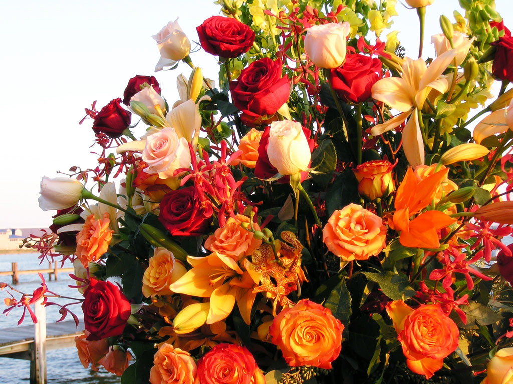 PA140237.Flowers