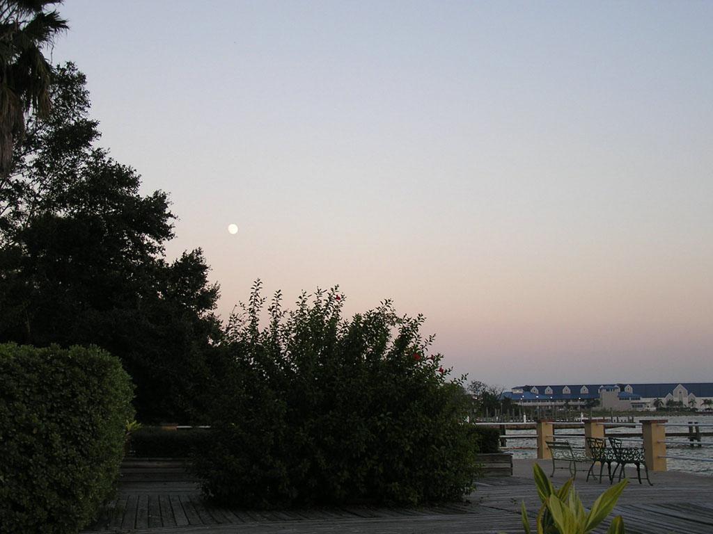 PA140273.Moon
