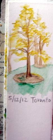 Tree sketch #2
