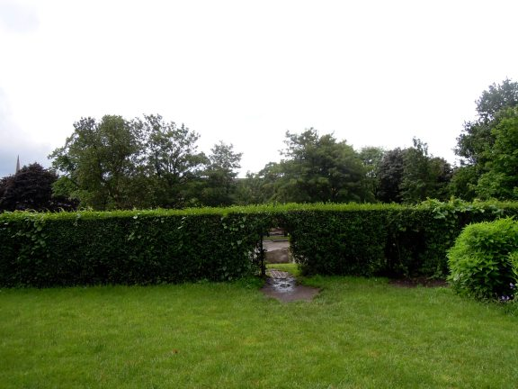 Hole in a hedge