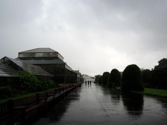 Glasshouses on a rainy day at the Botanic Gardens, Glasgow