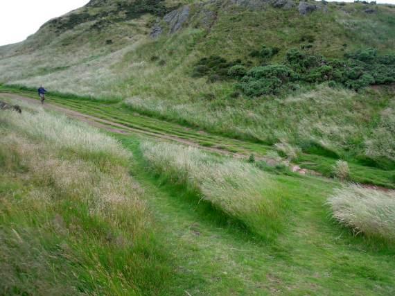 More lush grassy trails