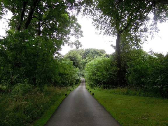 The long path to the entrance of Jupiter Artland, flanked with trees and bushes