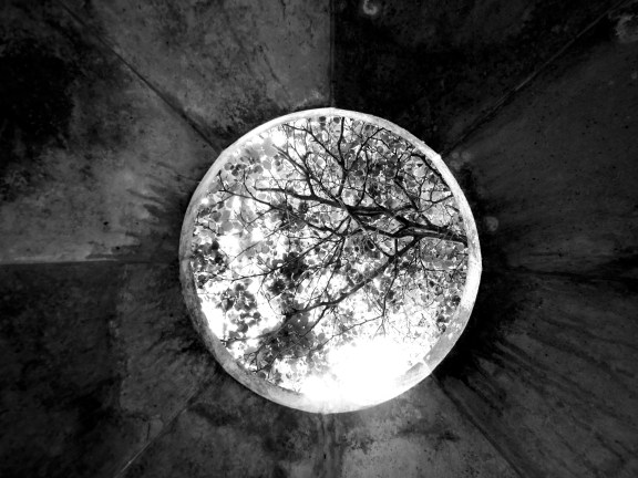 Treetops viewed through circular opening in the ceiling of the Temple of Apollo