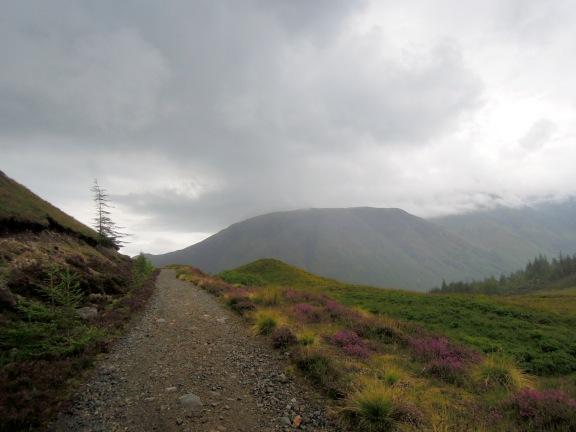 Trail going around the hillside