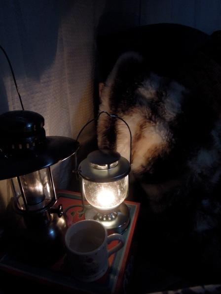 Lanterns and a mug of water.