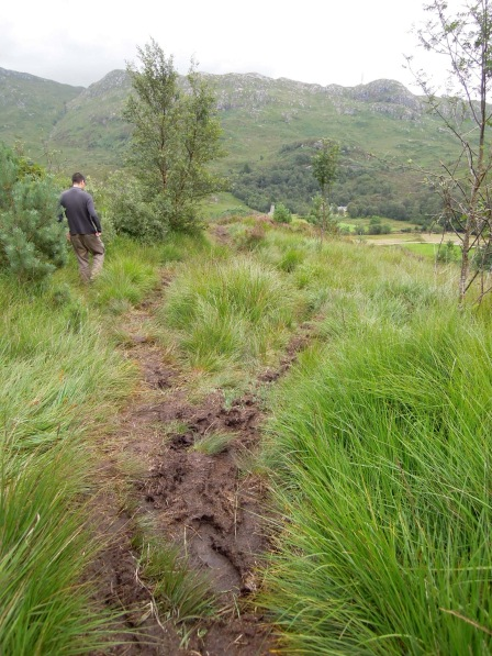 Muddy trail forking