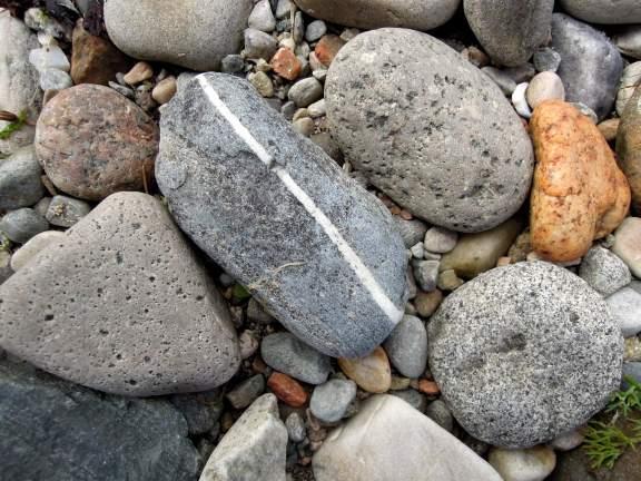 Oblong grey rock with a white stripe through it