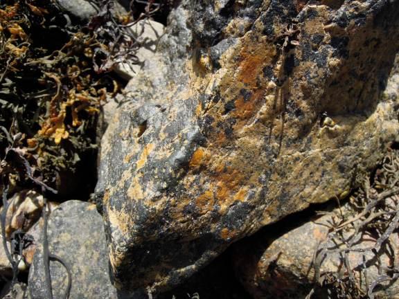 Granite-looking rock