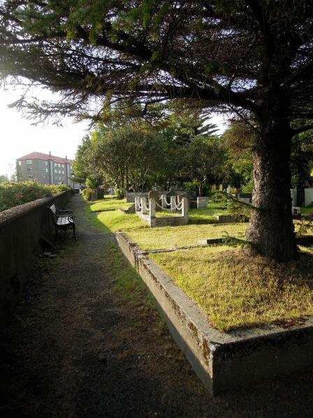 Bench along the edge of the cemetery