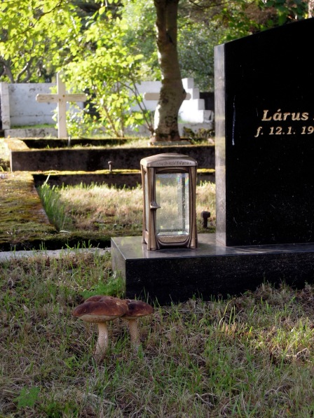 Mushrooms growing in a plot next to a headstone and a little lantern
