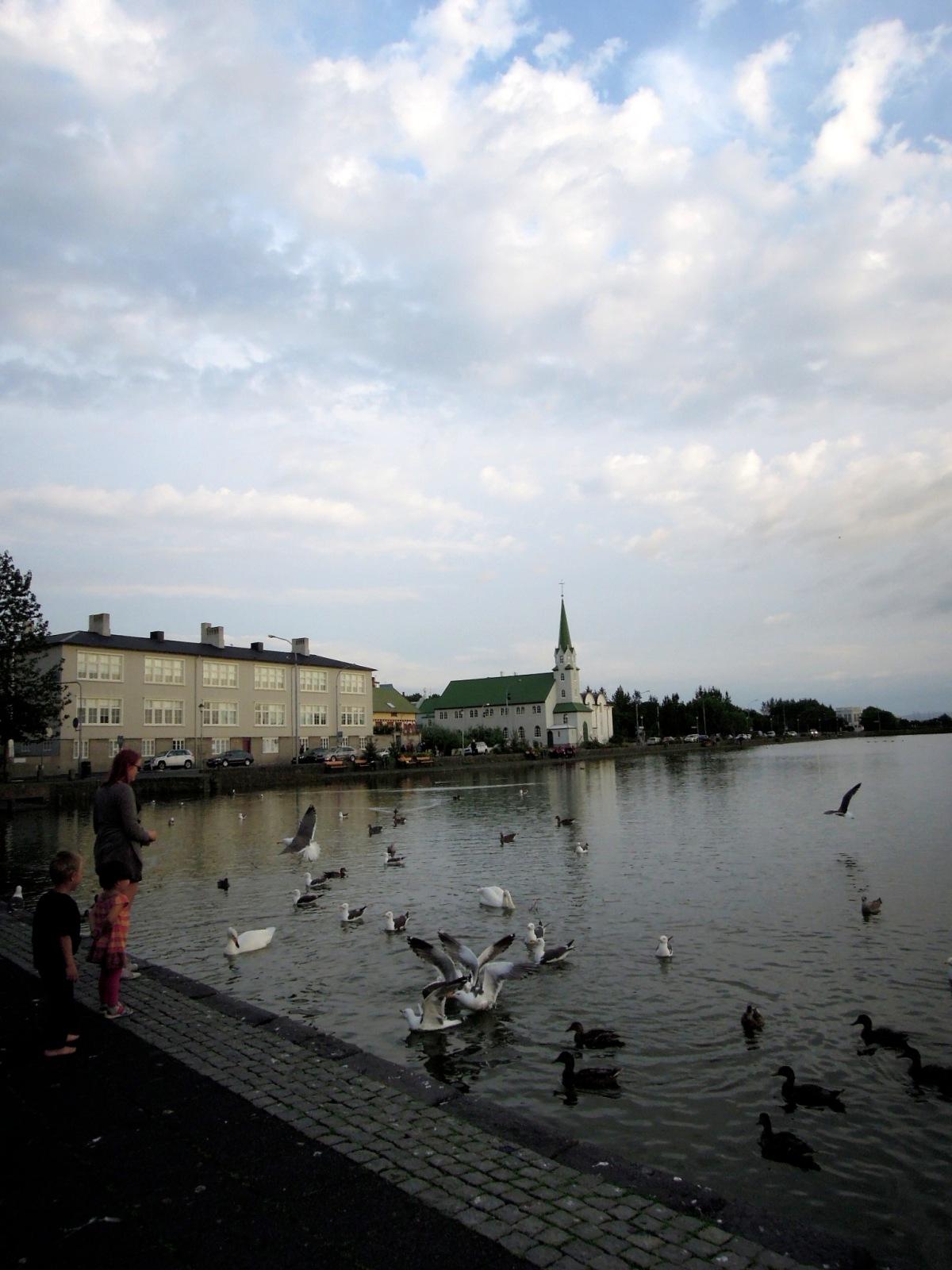 People feeding birds at Tjörnin