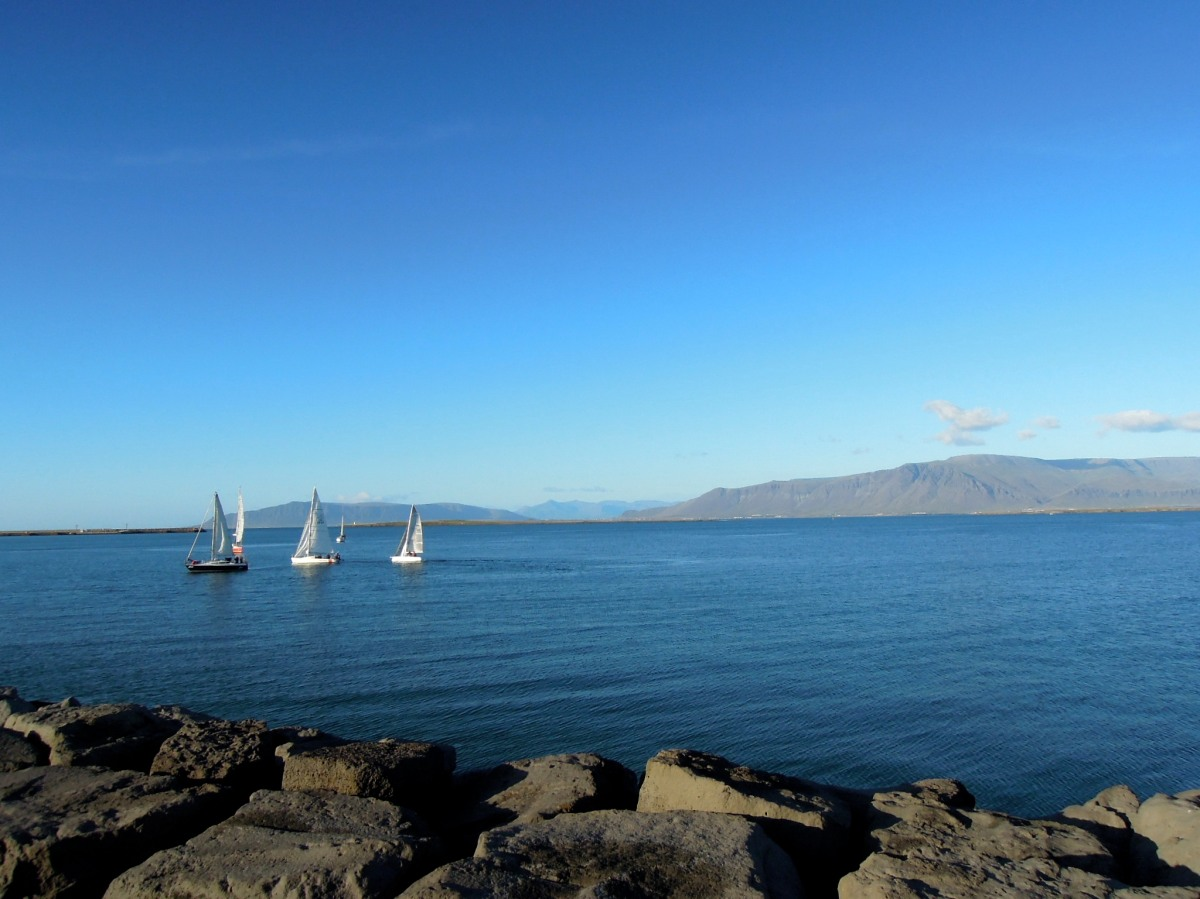 Sailboats on the bay