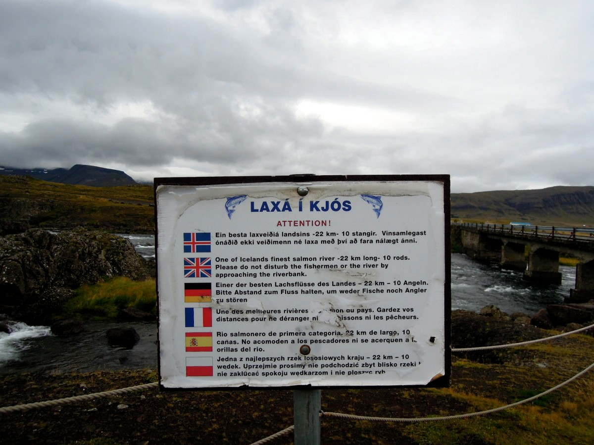 Sign indicating that this is a salmon river
