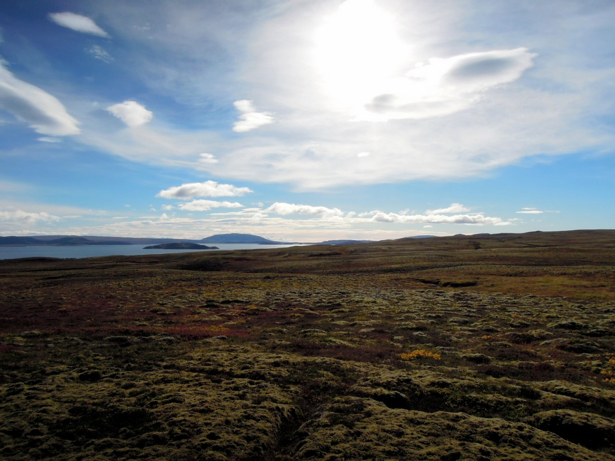 Blue sky with clouds, and fabulous Icelandic groundcover plants