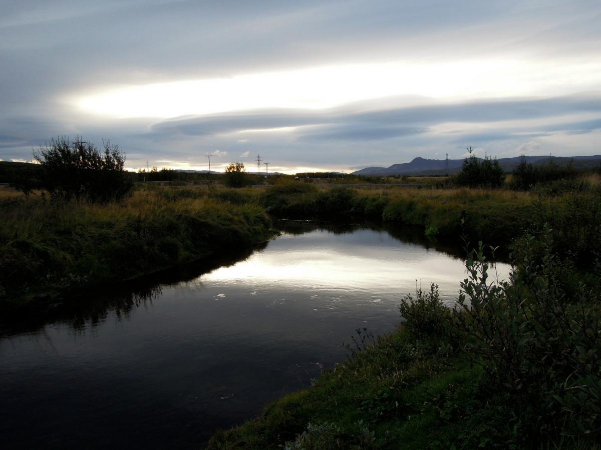 Brook or creek or river