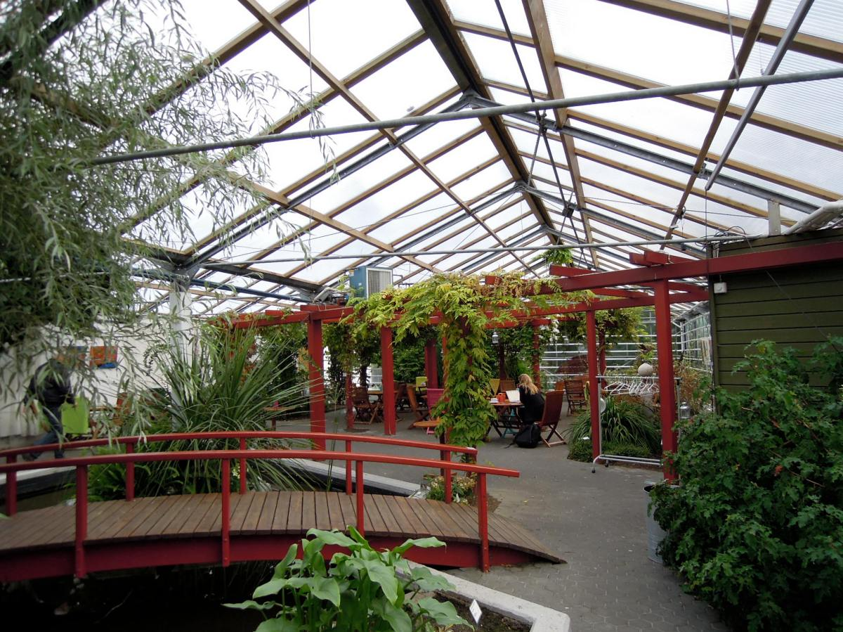 a cafe in a greenhouse