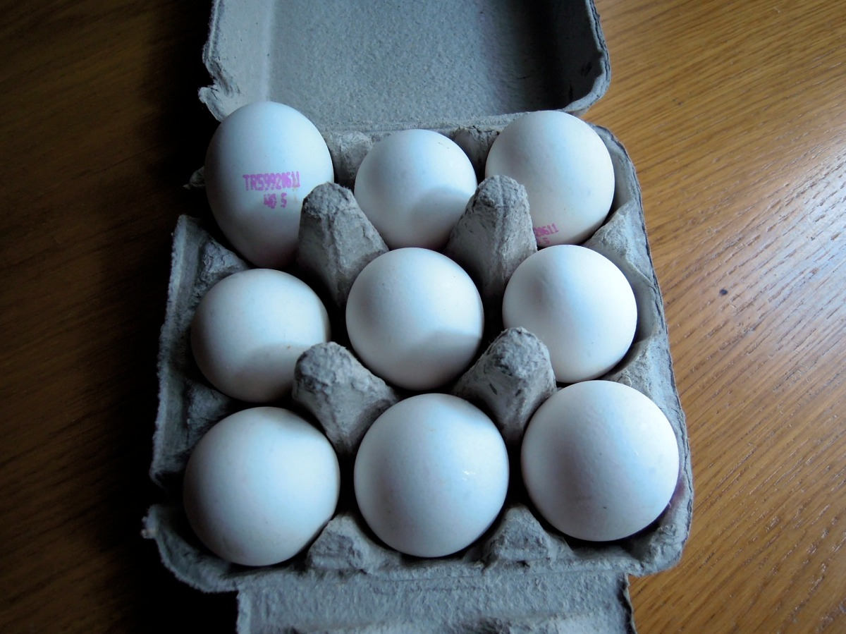 Nine-pack of eggs