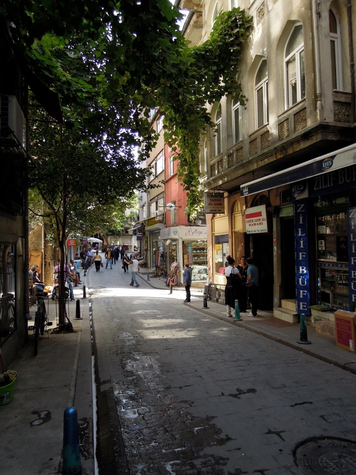 Leafy street in Cihangir