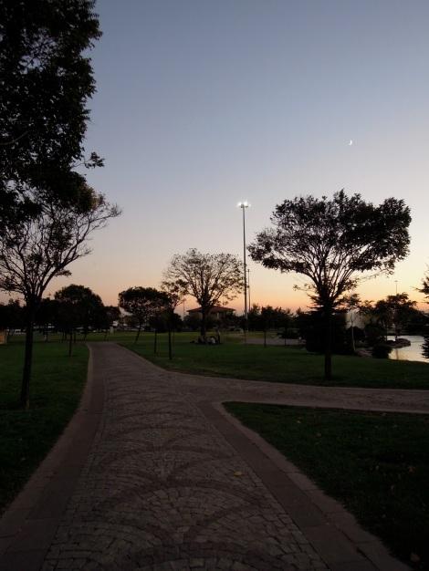 Park by dusk