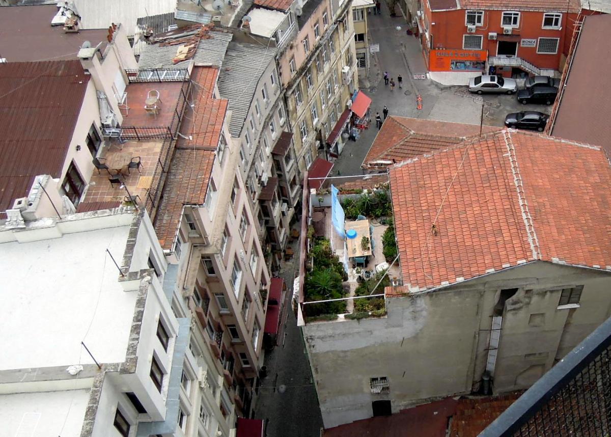 Cat on a rooftop far below