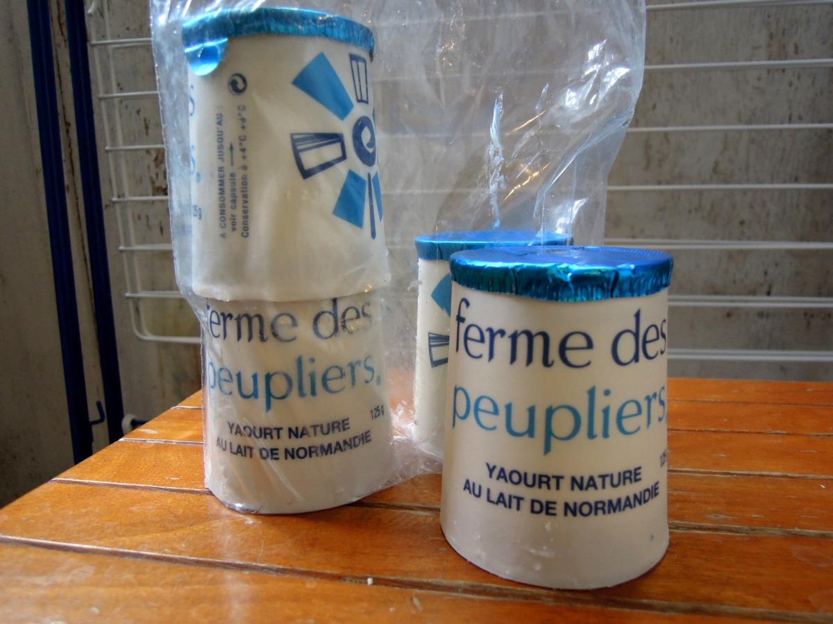 Little pots of yogurt