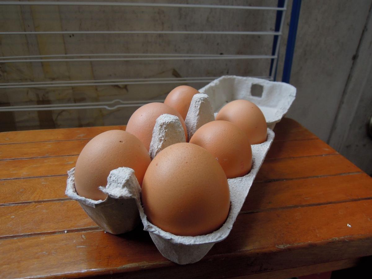 Six brown eggs