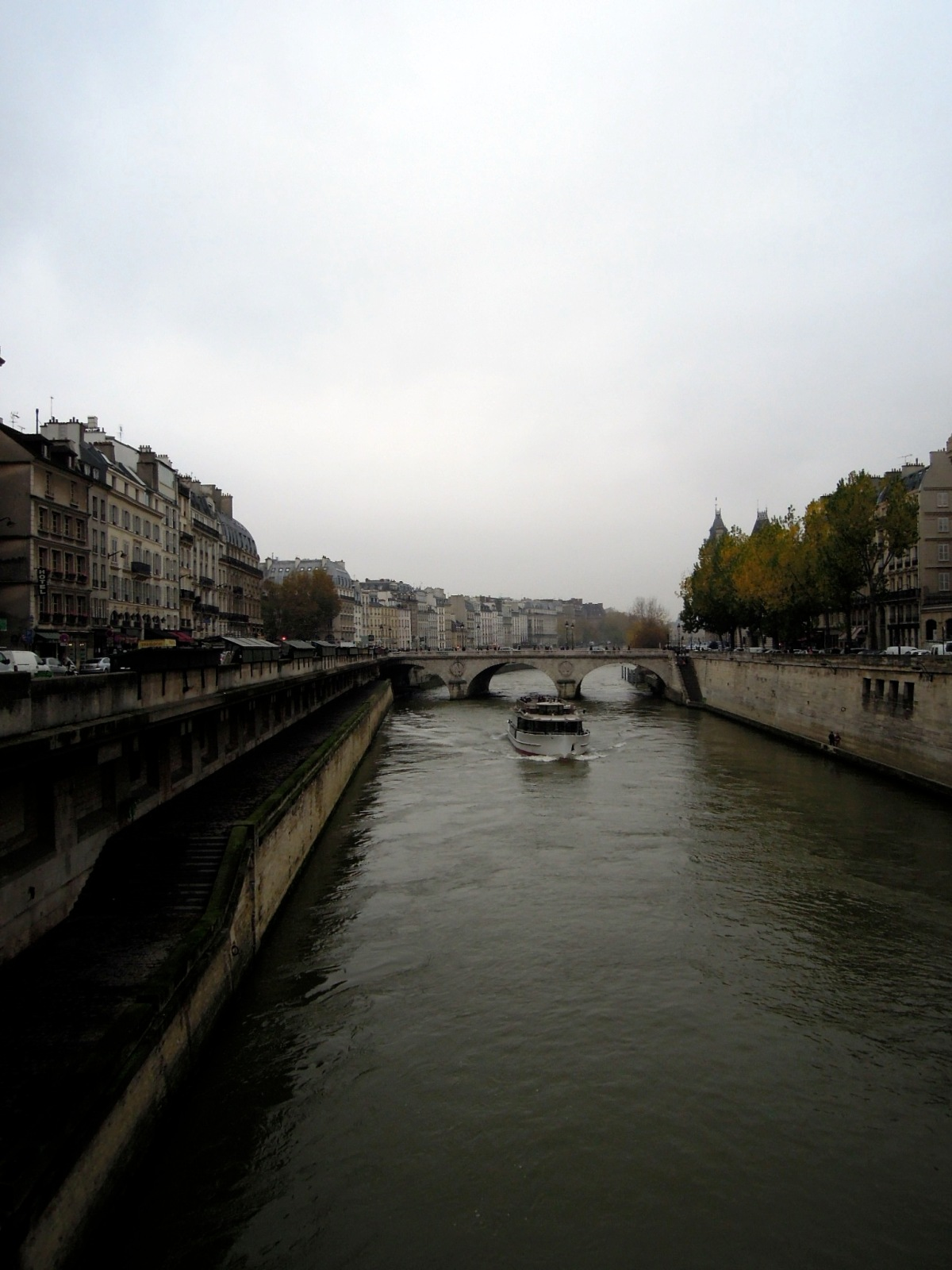 The Seine on an overcast, misty day