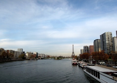 View of the Eiffel Tower across the Seine