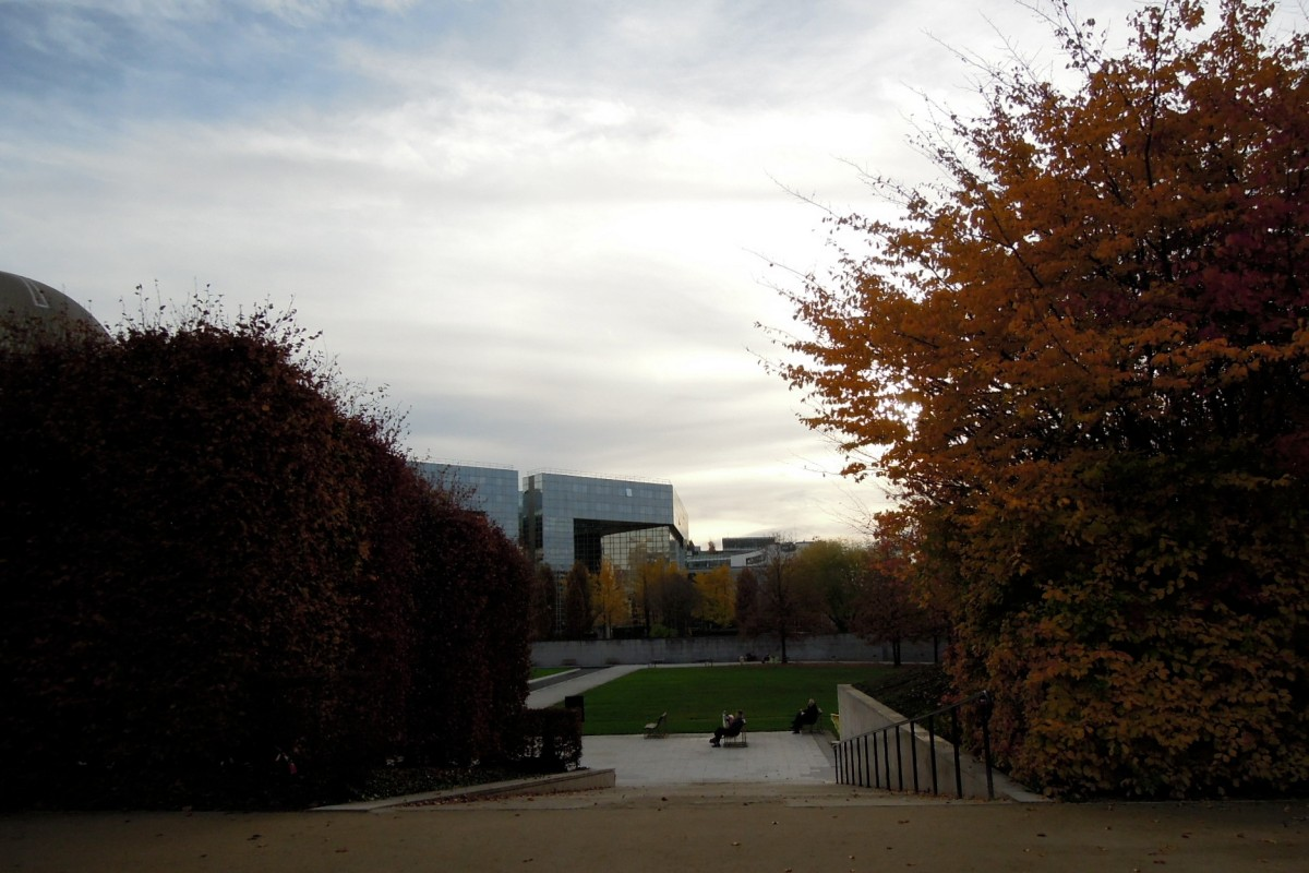 View of lawn and reflective buildings