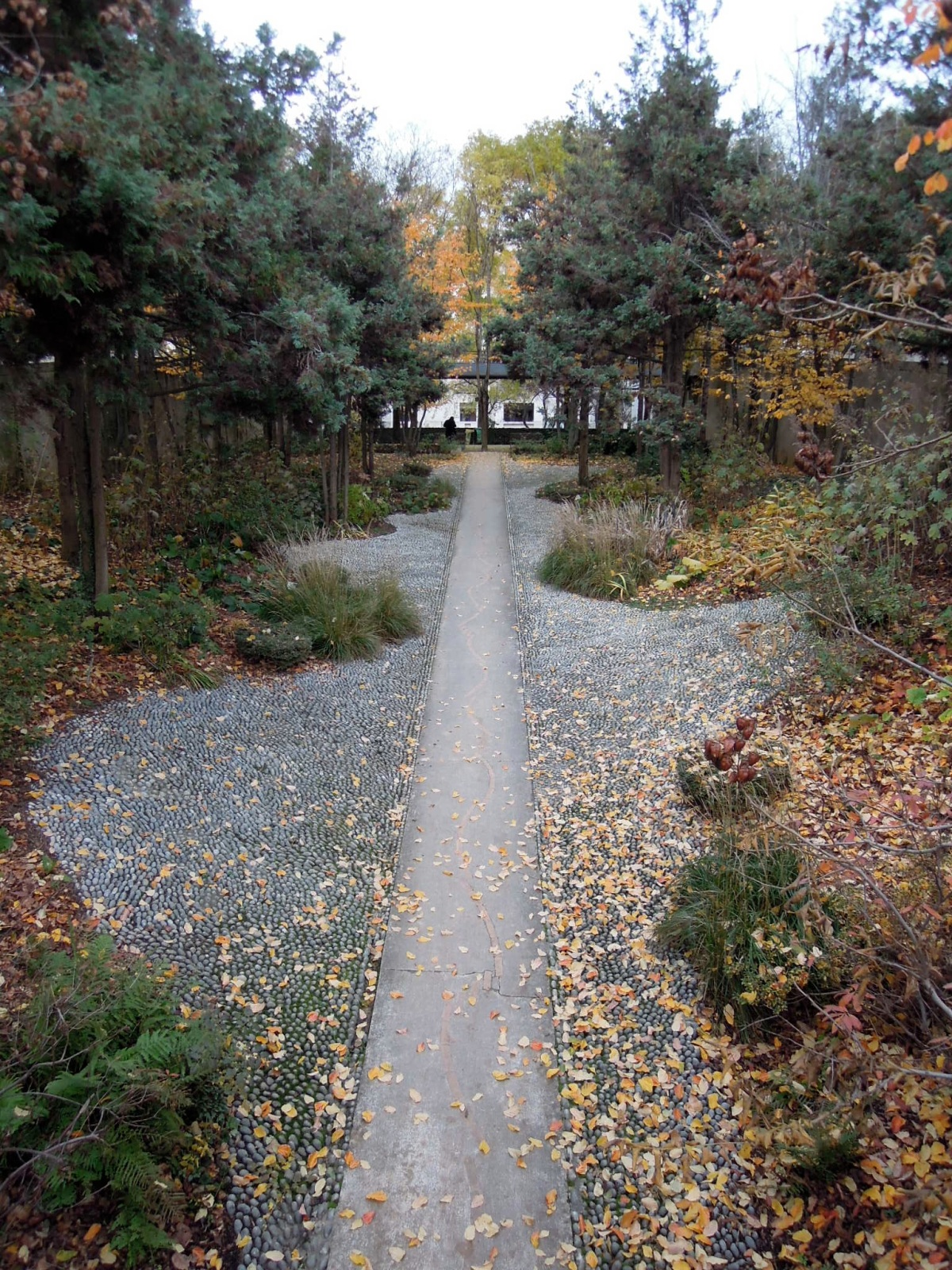 Autumn stone path