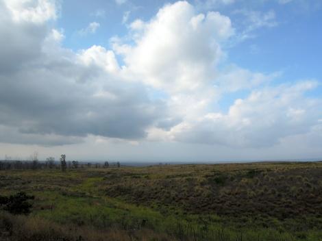 Scrubby rolling hills