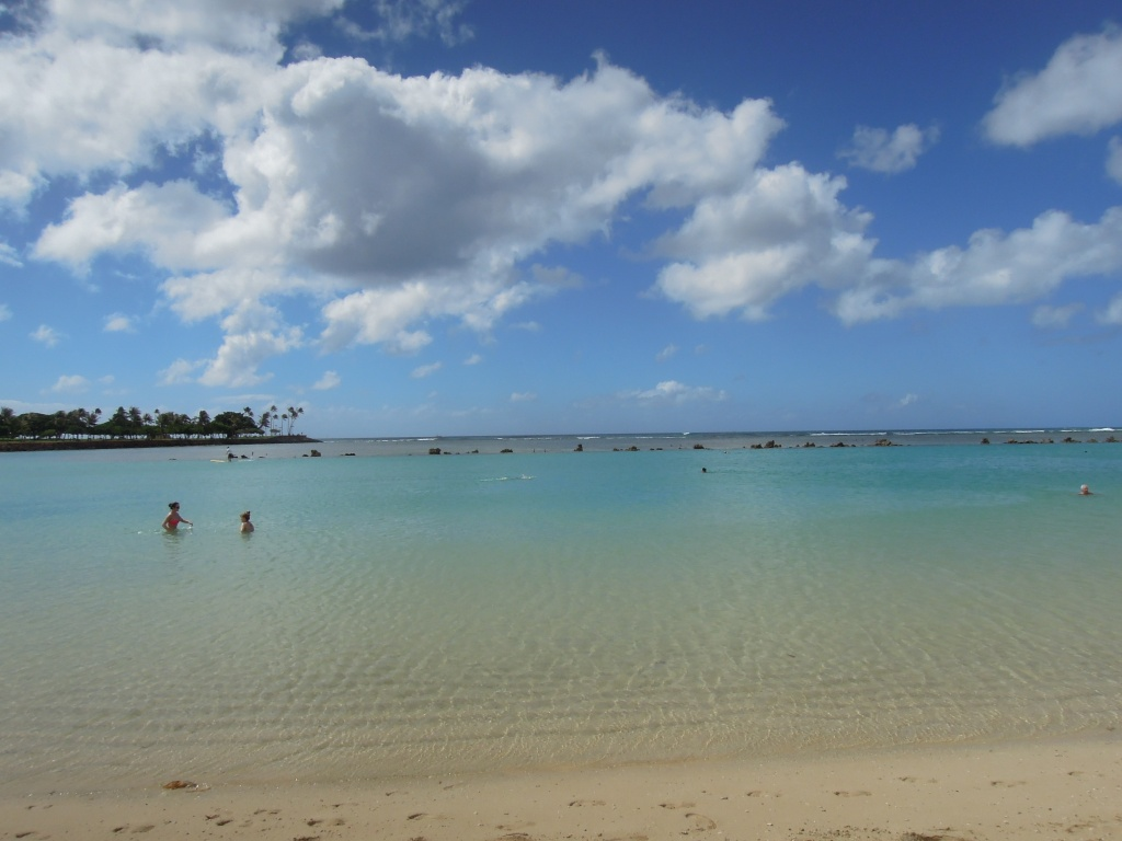 Ala Moana Beach -- there were little fish in the water!