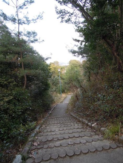 Cute steps
