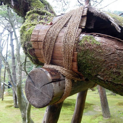 Tree care.