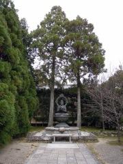 Beautiful peaceful Buddha.