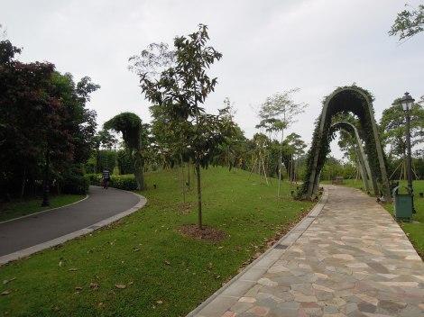 DSCN0266.Trellis garden