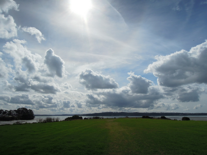 Waterfront, green grass, big sky
