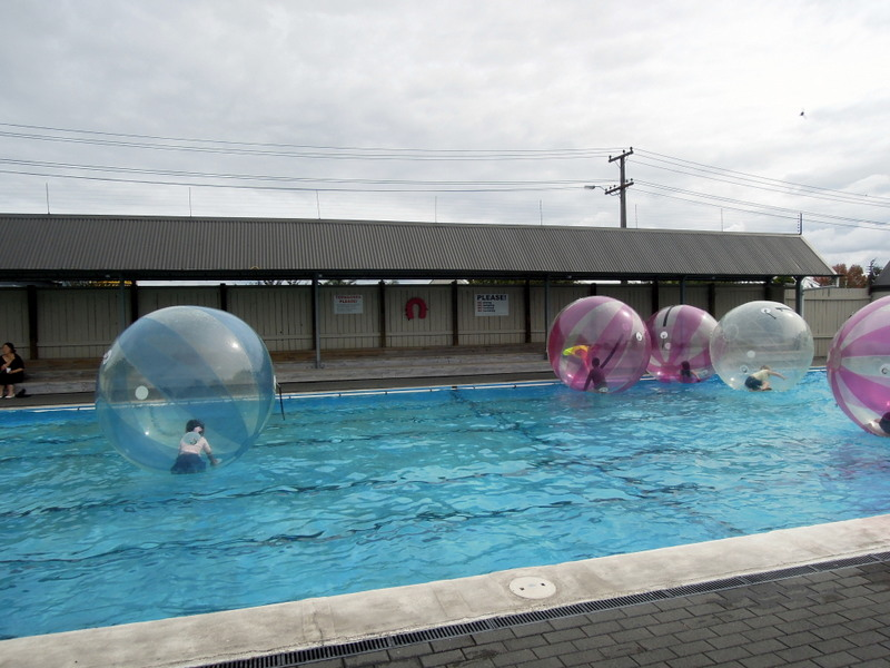 Kids in big plastic balls on the surface of a swimming pool