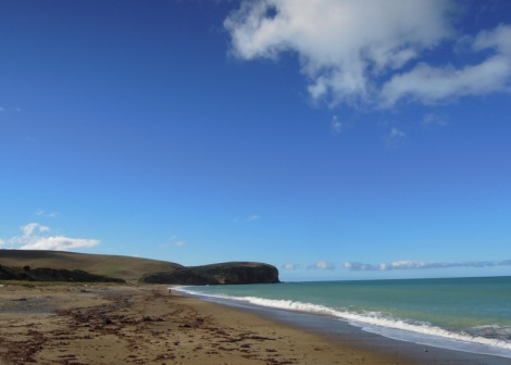Beach near Oamaru, New Zealand