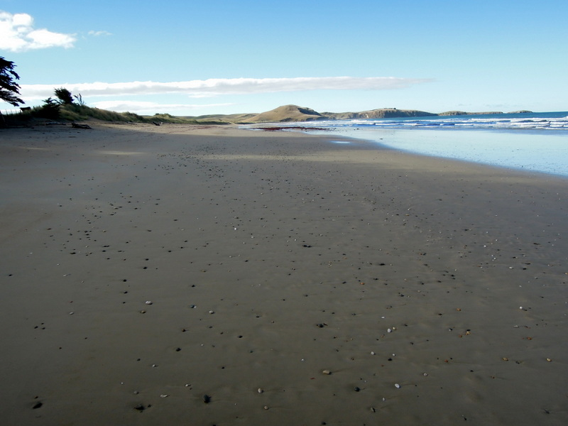 Beach, South Island, New Zealand