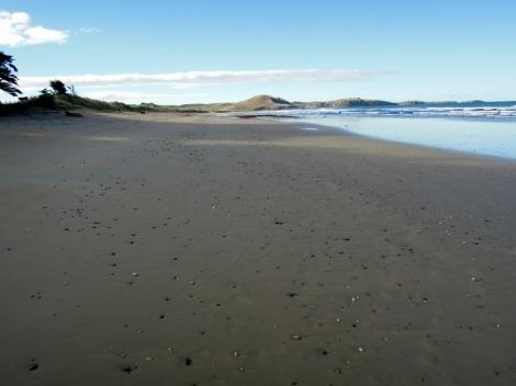 Beach, South Island, New Zealand