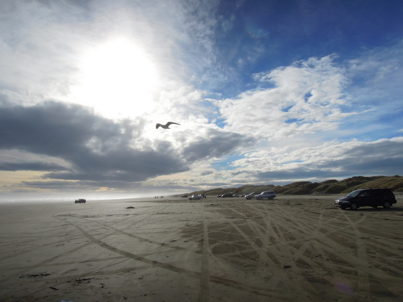 Cars, Oreti Beach, New Zealand